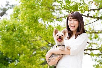 女性に抱っこされる犬  04-18-03