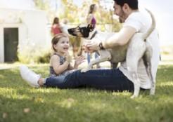 親子と犬で遊ぶ 11-17-02