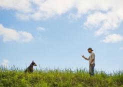 人と犬の関係  11-06-01