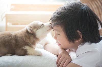子供と愛犬  05-16-01