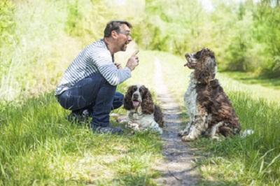 犬のトレーナー 11-09-04