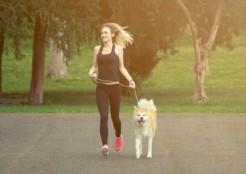 犬の散歩 04-26-06